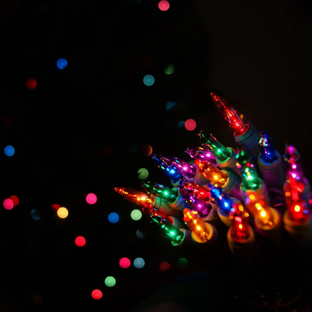 A cluster of multicolored Christmas lights shine in the darkness.